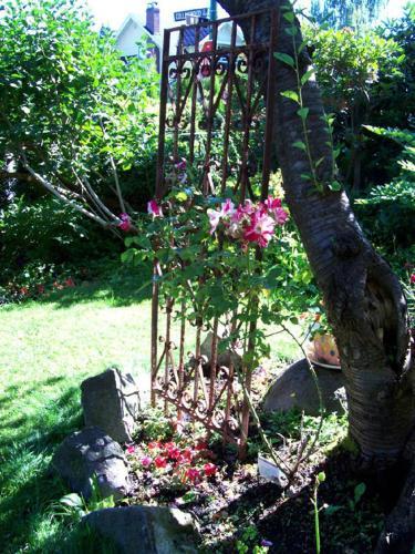 Kitsilano Garden Suites - Vancouver, BC V6G 2R8