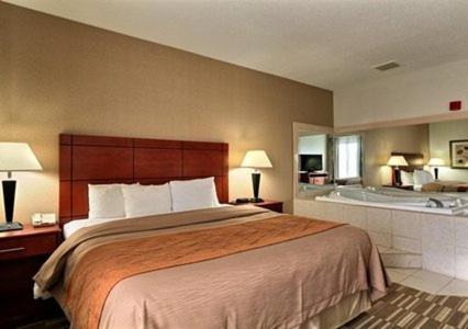 Comfort Inn & Suites University South Photo