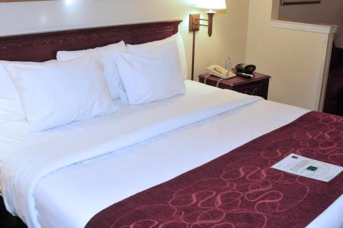 Comfort Suites Newark Photo
