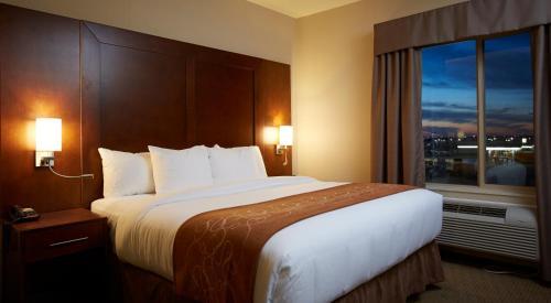 Comfort Suites Saskatoon Photo