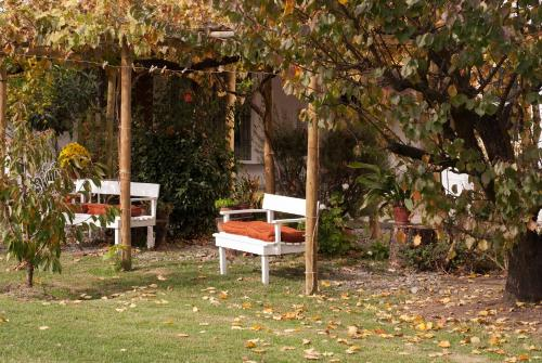 Casa Pando Photo