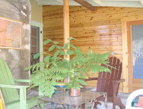 Fivespot Cabin Photo