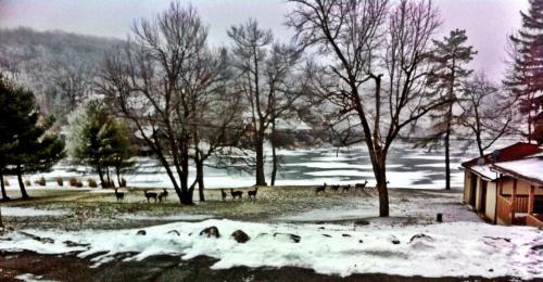 Lake Harmony Inn - Albrightsville, PA 18624