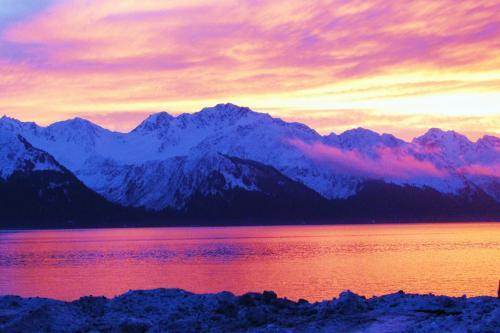 Arctic Paradise B&b - Seward, AK 99664