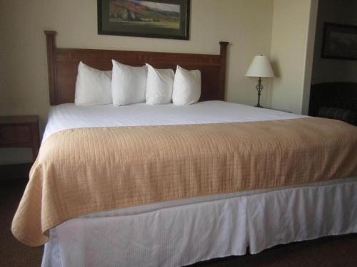Bridgeport Suites - Bridgeport, TX 76426