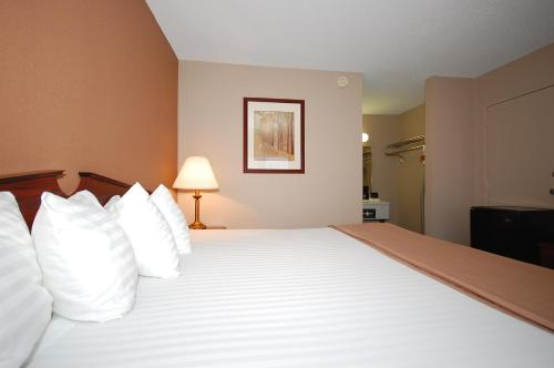 Magnuson Hotel Red Baron Photo