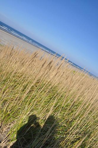 Campbell House At Klipsan Beach - Ocean Park, WA 98640