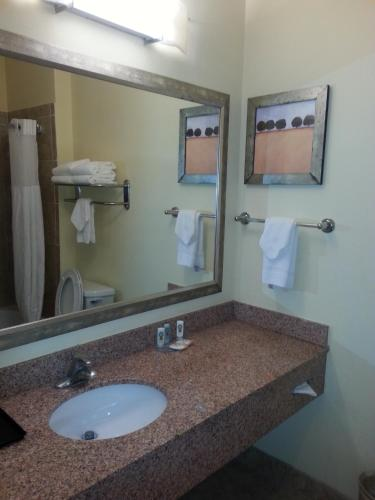 Quality Inn & Suites Houston photo 34