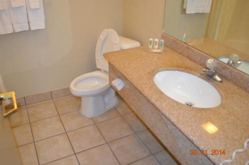 Quality Inn and Suites NRG Park - Medical Center photo 9