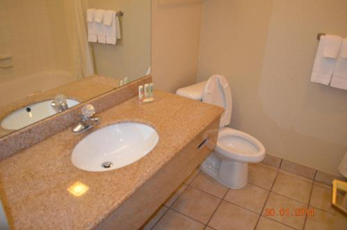 Quality Inn and Suites NRG Park - Medical Center photo 31