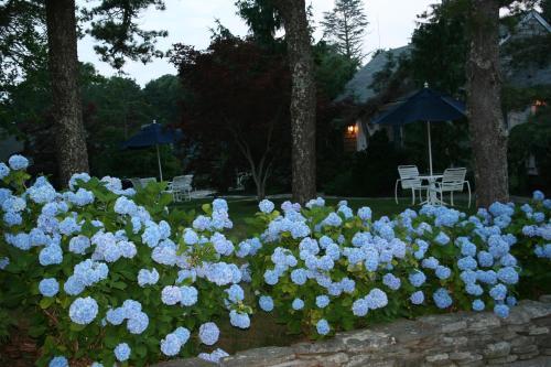 Pleasant Bay Village Resort Photo
