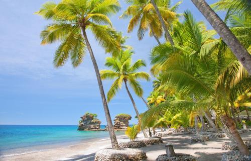 Anse Chastanet Resort - 14 of 28