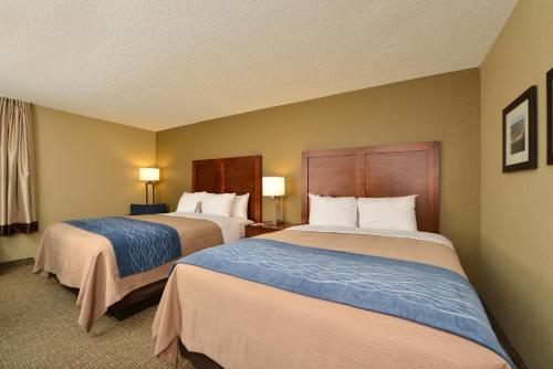 Comfort Inn of Elizabeth City Photo