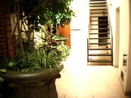 Hostel Americano Photo