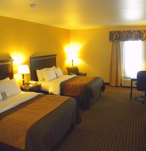 Comfort Inn & Suites Regional Medical Center Photo