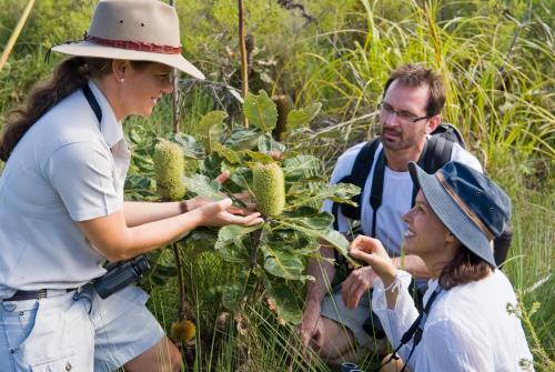 PMB 1 Urangan, Hervey Bay, Queensland 4655, Australia.