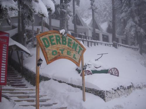 Ilgaz Ilgaz Derbent Hotel