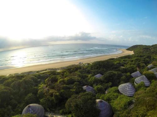 Thonga Beach Lodge Photo