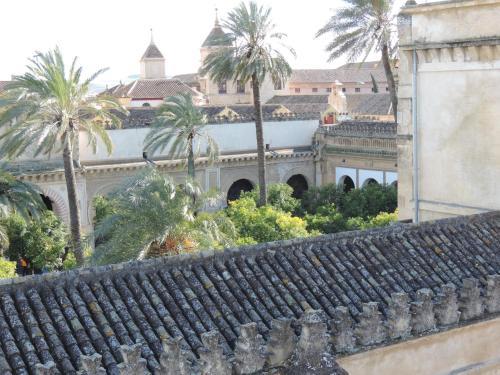 Calle Cardenal Herrero, 12, 14003 Córdoba, Spain.