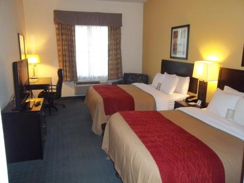 Comfort Inn & Suites Northeast - Gateway Photo
