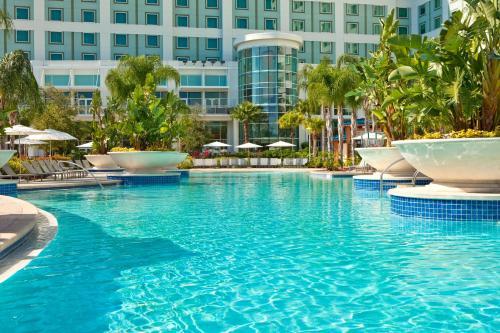 Hilton Orlando photo 19