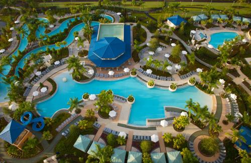 Hilton Orlando photo 21