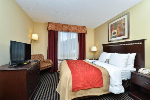 Comfort Inn West Mifflin Photo