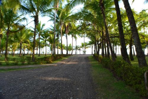 Hotel La Isla Photo