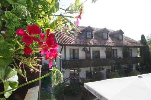 Hotel Neumayr photo 7
