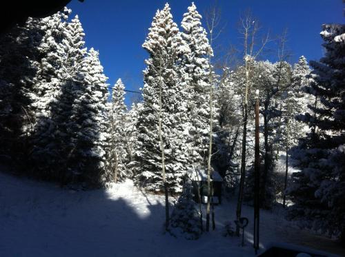 Elk Run Bed And Breakfast - Evergreen, CO 80439