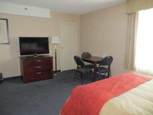 Comfort Inn Mississauga Photo