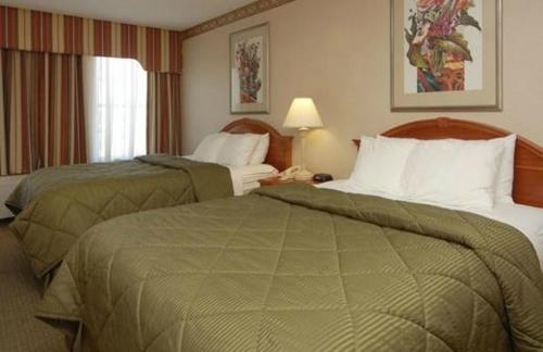 Comfort Inn Chelsea Photo