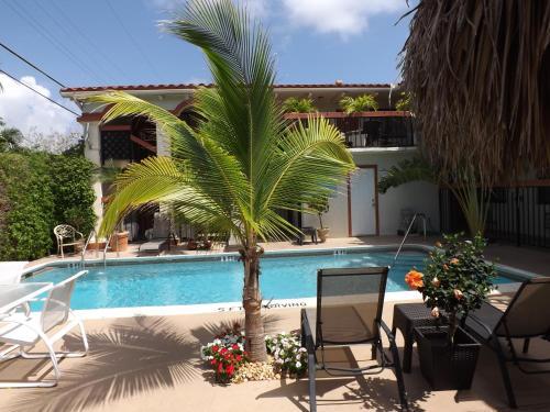 Scandia Lodge & Suites Photo