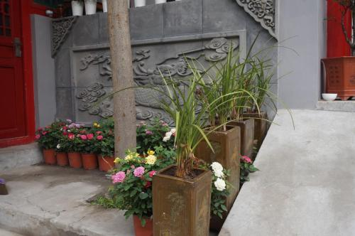 Yue Xuan Courtyard Garden International Youth Hostel photo 4