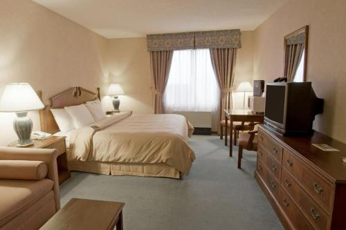 Comfort Inn Port Hope Photo