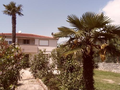 Apartment Floresita