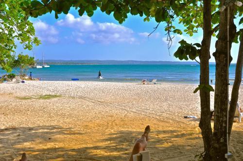 Carib Beach Apartments, Negril Photo