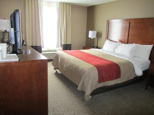Comfort Inn & Suites Morgan City Photo