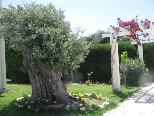 Secret Garden Residence