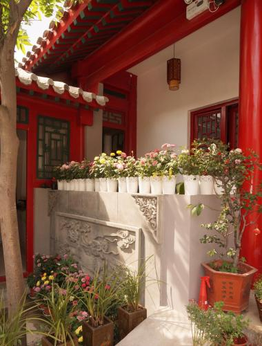 Yue Xuan Courtyard Garden International Youth Hostel photo 8