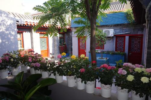 Yue Xuan Courtyard Garden International Youth Hostel photo 18