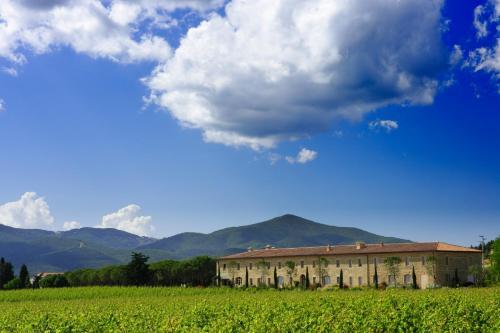 Località Badiola, Castiglione della Pescaia, 58043, Tuscany, Italy.