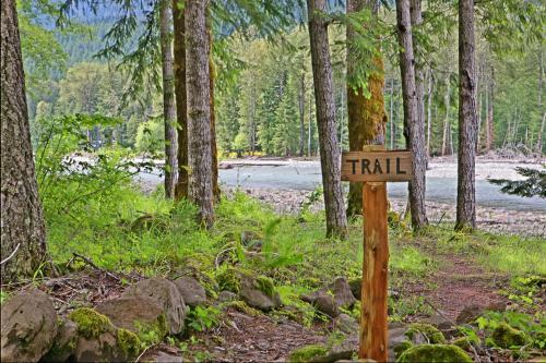 Alpine Adventure Lodge Photo