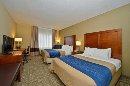 Comfort Inn and Suites Dover Photo
