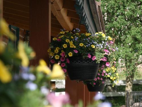 Ouray Inn - Ouray, CO 81427