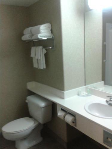 Comfort Inn & Suites Salmon Arm Photo