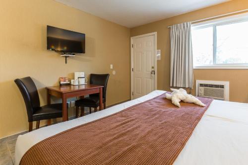 Oasis Inn - Kelowna, BC V1Y 3H7