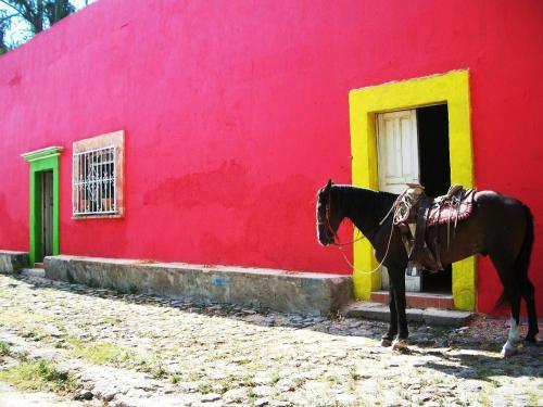 La Ceiba Casona Rural Photo