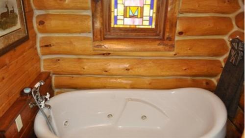River Trail Log Cabin Photo
