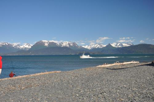 Frenchys Fishing And Adventure Cabins - Sterling, AK 99672